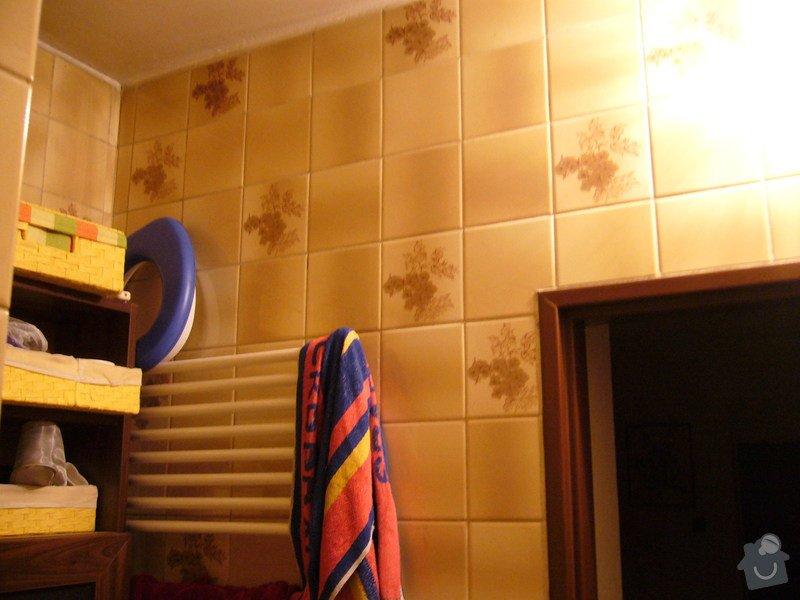 Rekonstrukce koupelny: P1040996
