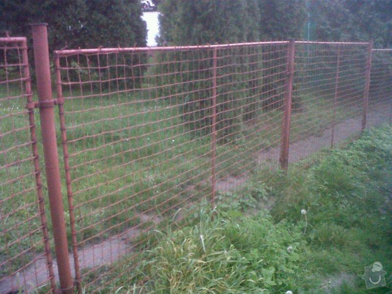 Nátěr kovového plotu - renovace: IMG00170-20141017-0708