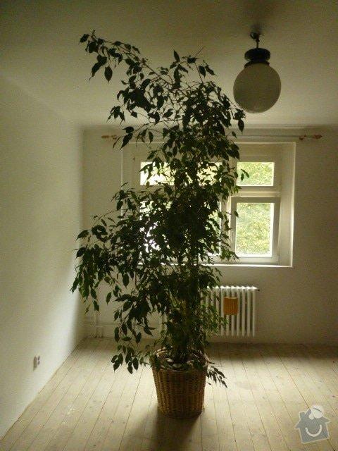Výmalba 4 místností: P1040559