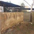 Rekonstrukce pristresku na popelnice 2014 03 pristresek popelnice 09