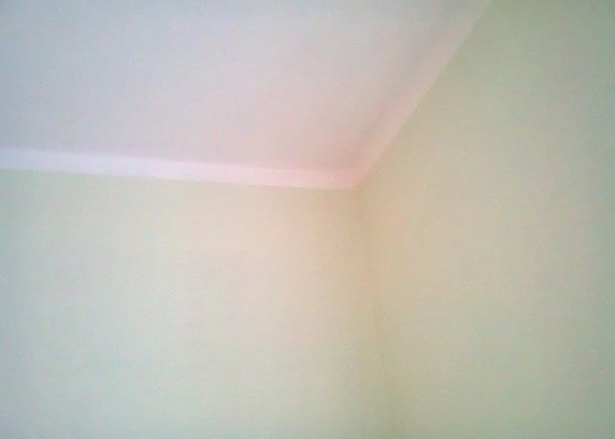 Malířské práce (1 pokoj, pomoc s nábytkem, úklid po malování)