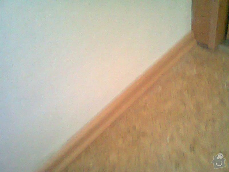 Malířské práce (1 pokoj, pomoc s nábytkem, úklid po malování): Fotografie0147