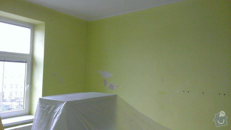Malířské práce (byt): WP_20141117_003