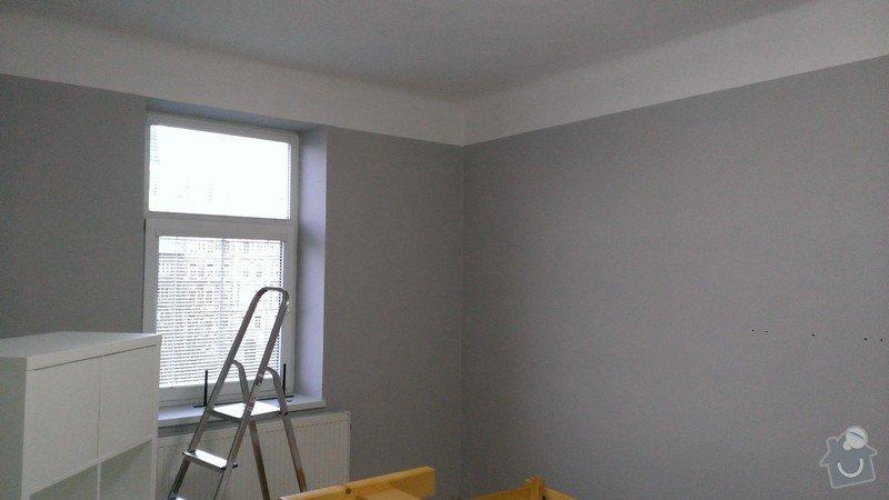 Malířské práce (byt): WP_20141119_001