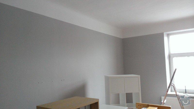Malířské práce (byt): WP_20141119_006