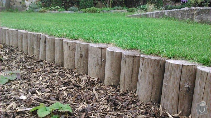 Udržba zeleně a keřů, založení trávníku: DSC_1221