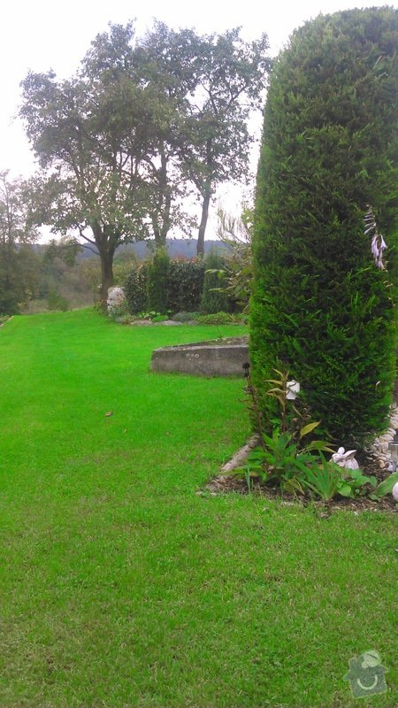 Udržba zeleně a keřů, založení trávníku: DSC_1201