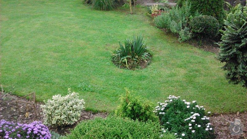Udržba zeleně a keřů, založení trávníku: DSC_1220