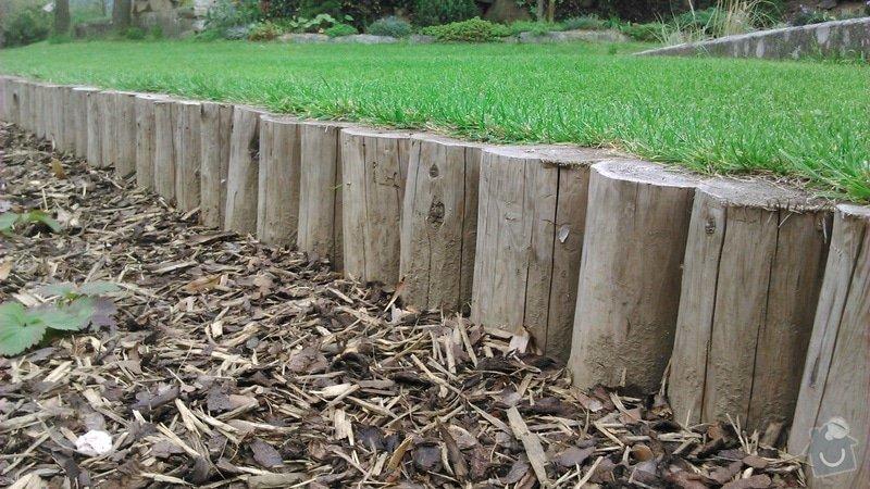 Udržba zeleně a keřů, založení trávníku: DSC_1224
