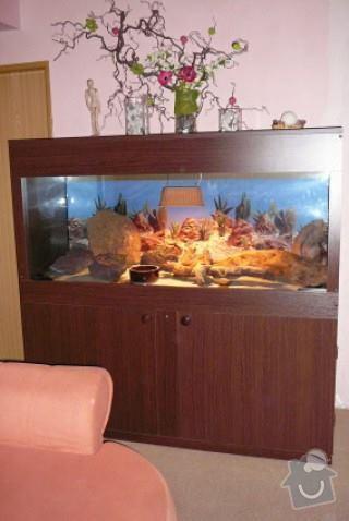 Skřín kolem akvária: 10581483_865587526815567_1674535883_n