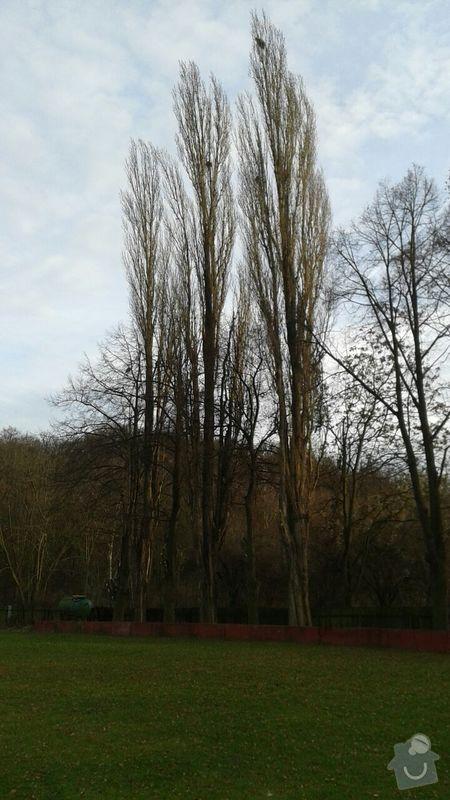 Kácení stromů: IMG-20141213-WA0000