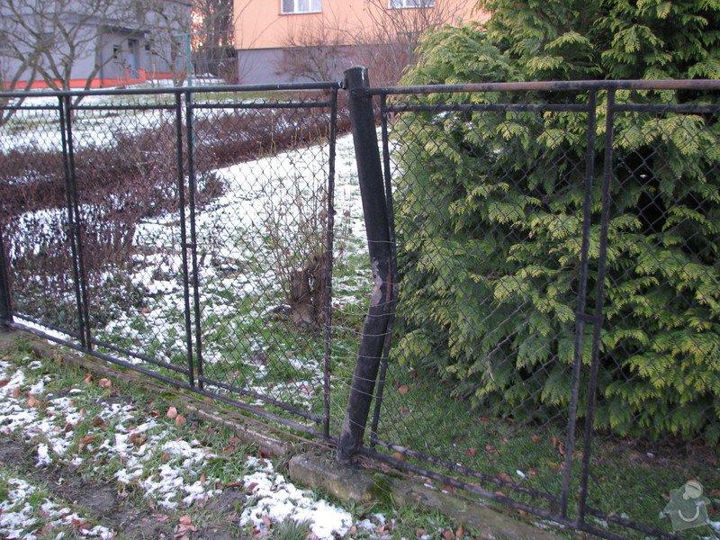 Oprava drátěného plotu: IMG_3935