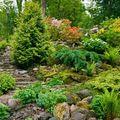 Realizace zahrady se svazitymi okraji inspirace zahrada co se nam libi  pro nas svah z boku domu udelat v mini verzi 1