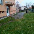 Betonova venkovni dlazba s pokladkou 2014 12 07 15.29.41