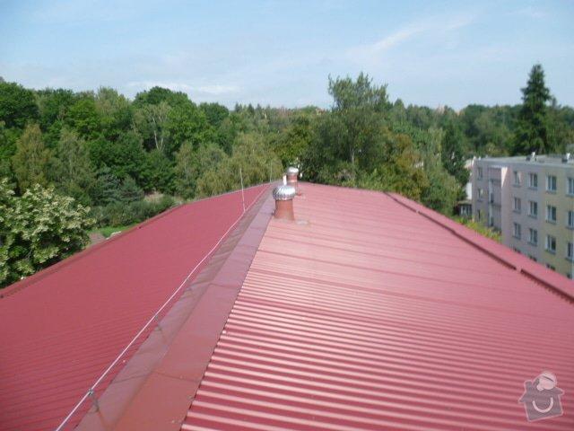 Lokální oprava střechy: P1070790