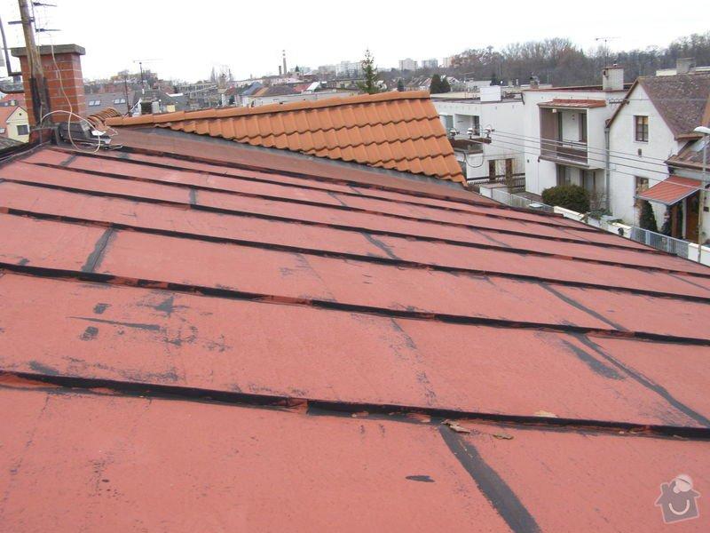 Natření střechy rodinného domu: P2052006