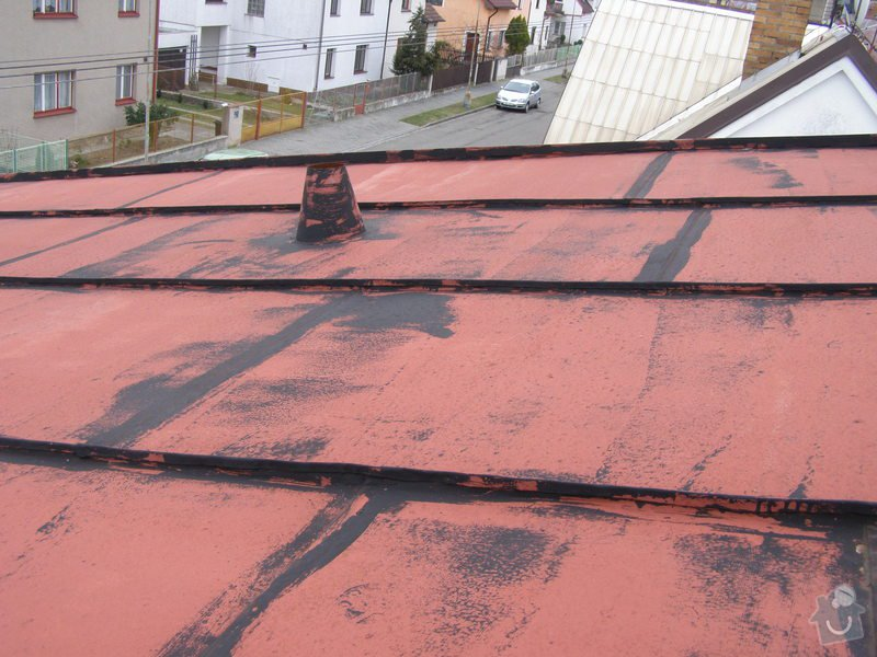 Natření střechy rodinného domu: P2052010