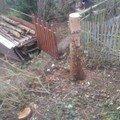 Odstraneni parezu po pokacenych stromech kozak parez 3