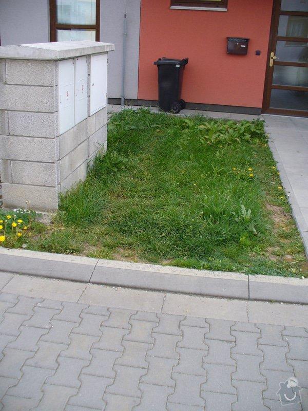 Zámková dlažba parkovacího místa: P1150946