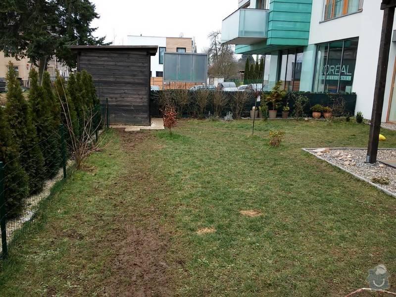 Zahradnické práce - trávník, travní koberec 35-40m2: 20150215_112559