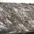 Oprava strechy po padu stromu na chate ve frydlante nad ostra sdc13118