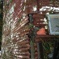 Oprava strechy po padu stromu na chate ve frydlante nad ostra poskozeni hrebenu strechy