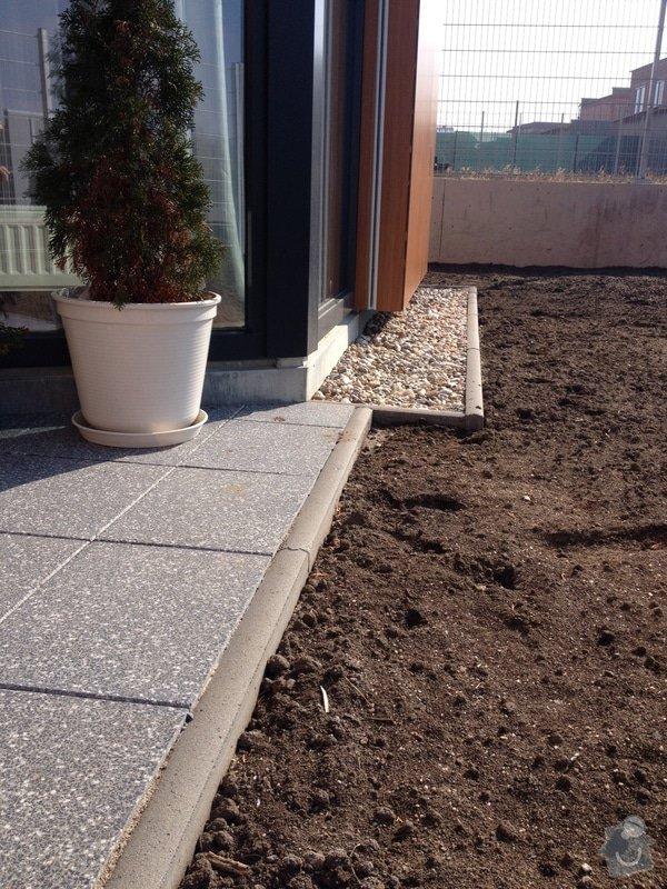 Travní koberec: image