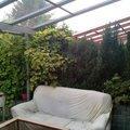 Vystavba 2 zdi oddelujici zahrady radovych rodinnych domu img 20140718 201550