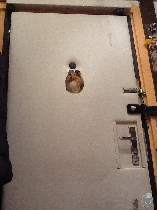 Přečalounění bezpečnostních dveří: image2
