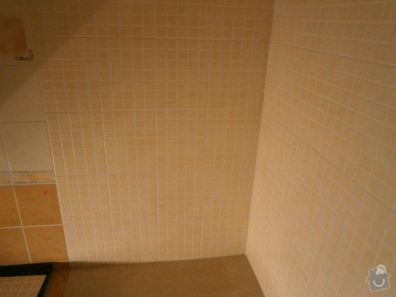 Rekonstrukce části koupelny: P9150323