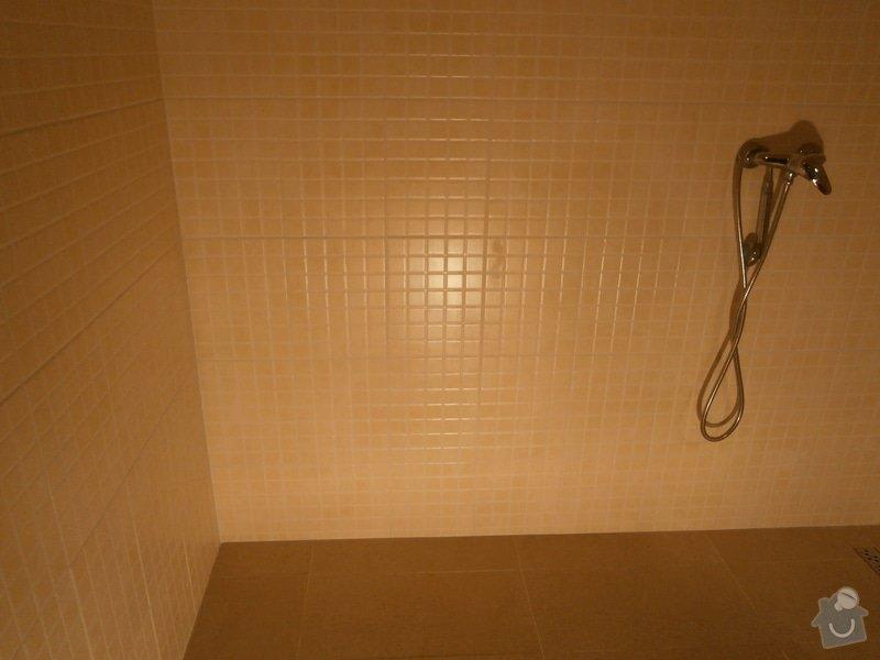 Rekonstrukce části koupelny: P9150322