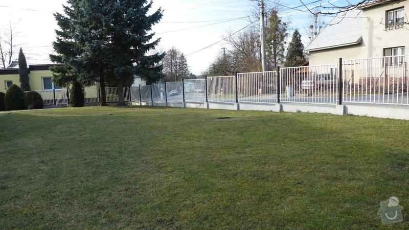 Nátěr kovového plotu: DSC01730