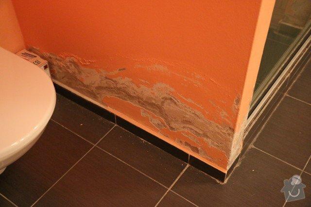 Oprava sprchového koutu a vymalování koupelny: IMG_6147