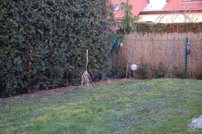 Realizace male zahrady: DSC_0138