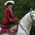 Fotografovani koni dama v damskem sedle 186