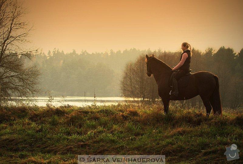 Fotografování koní: podzimni-343