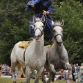 Fotografovani koni uherska posta 218