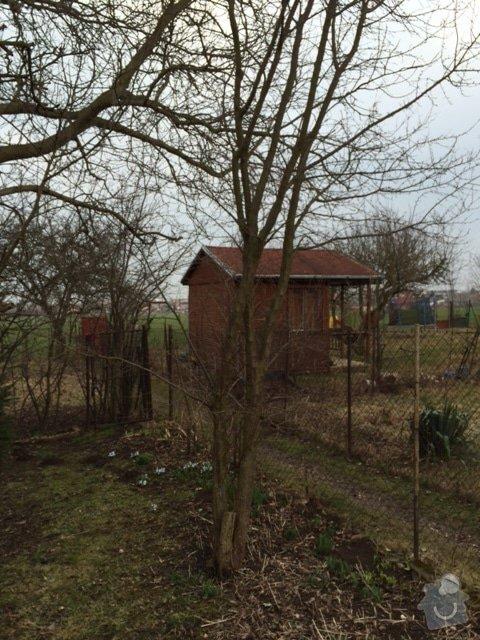 Pokaceni ovocnych stromu a vykopani parezu: IMG_0424