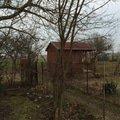 Pokaceni ovocnych stromu a vykopani parezu img 0424