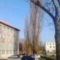 Pokaceni 3 vzrostlych stromu img 20150318 155534