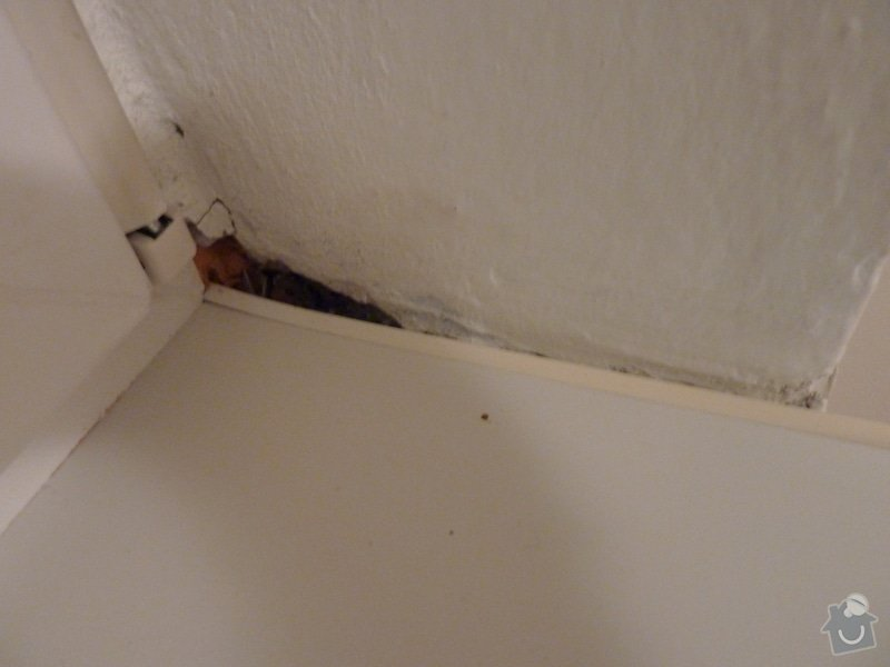 Malířské práce (1 pokoj), výměna stropní garnýže, oprava zvedání válendy: P1070763