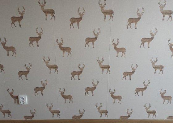 Tapetovaní steny cca, 2,5 x 3,5m