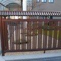 Dreveny plot 19m p2262151