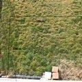 Zahradni terasa dlazba ve sterkovem lozi 1