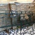 Montaz zrekonstruovaneho zabradli na dvorku vcetne vyreseni o img 3512 2