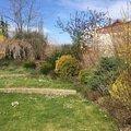 Zahradnicke prace pravidelna udrzba zahrady img 0004 2