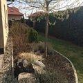 Zahradnicke prace pravidelna udrzba zahrady img 0003 2
