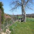 Zhotoveni pevneho betonoveho plotu p1130107