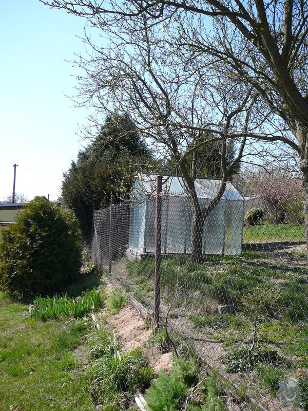 Zhotovení pevného betonového plotu: P1130108