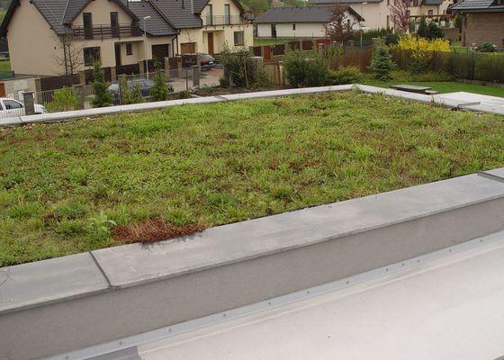 Vypletí zelené střechy cca 150 m2